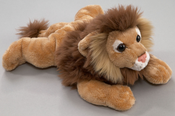 Lion lying