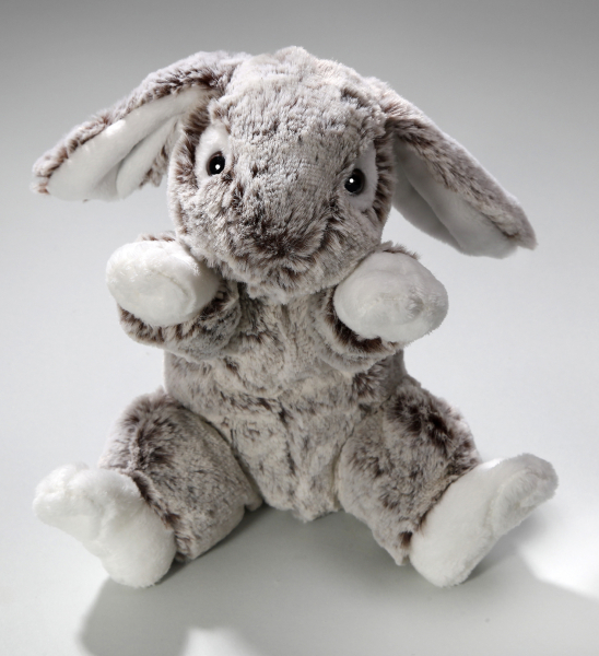 Rabbit Bunny sitting grey