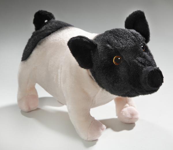 Schwein schwarz-rosa, Schwäbisch-Hällisches Landschwein