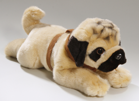 Bulldogge, Pug lying with belt