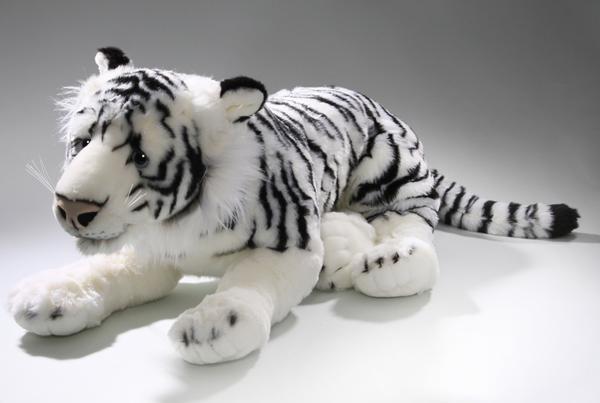 Tiger weiß