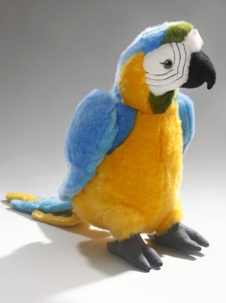 Papagei blau-gelb