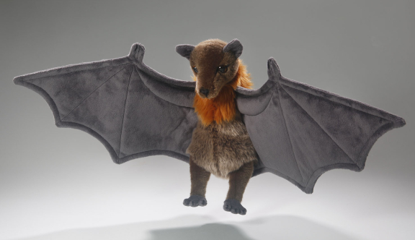 Flughund, Flying Fox