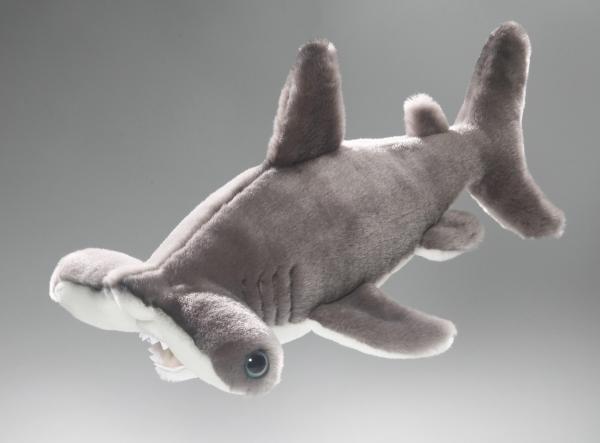 Shark, Hammerhead Shark
