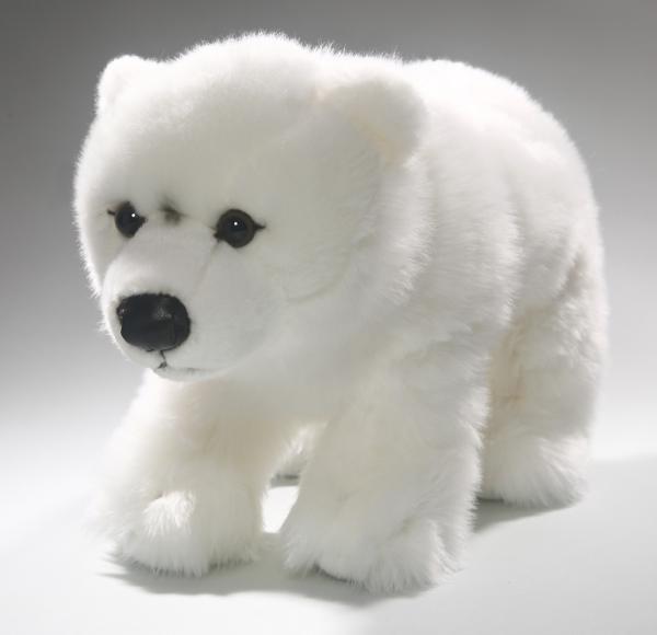 Polar Bear Ice Bear