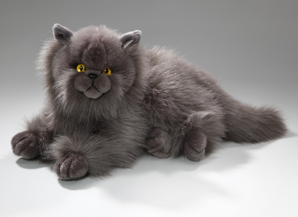Cat Persian, grey