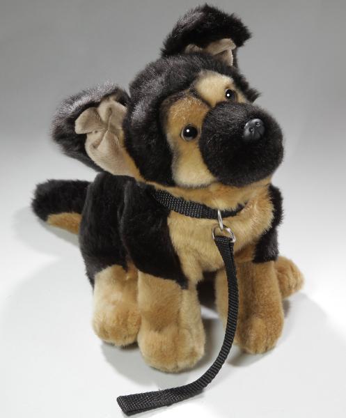 German Shepherd Dog with Lead
