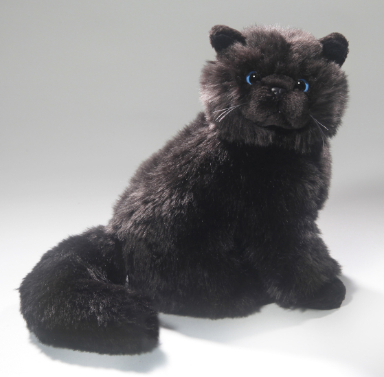 Cat Persian, black