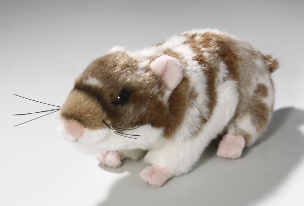 Hamster dark-brown