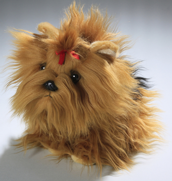 Yorkshire Terrier Dog Puppy