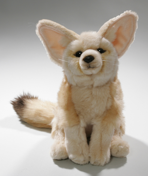 Fox, Fennec sitting