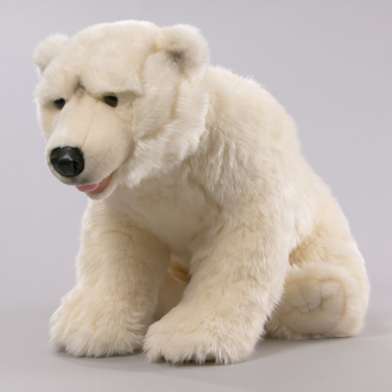 Polar Bear Ice Bear
