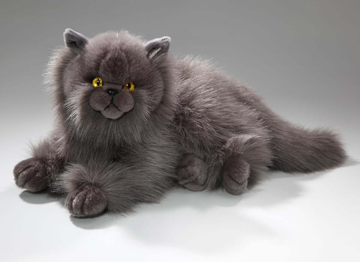 Katze Antiallergisch