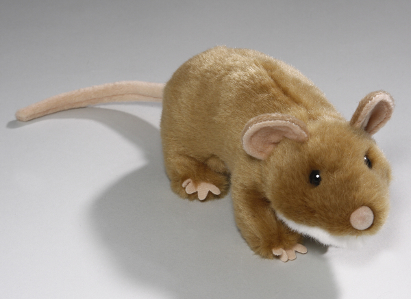 Mouse brown