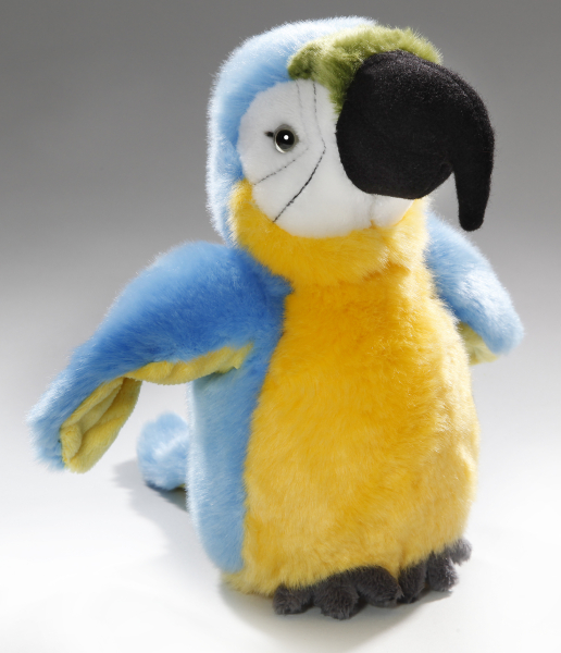 Parrot blue-yellow