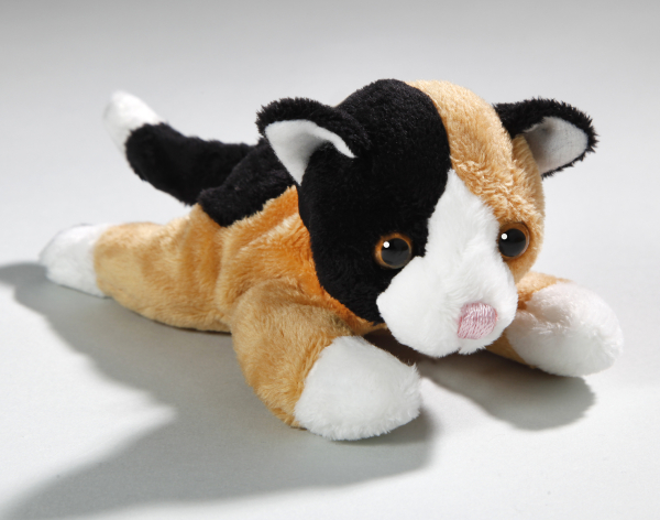 Calico Katze